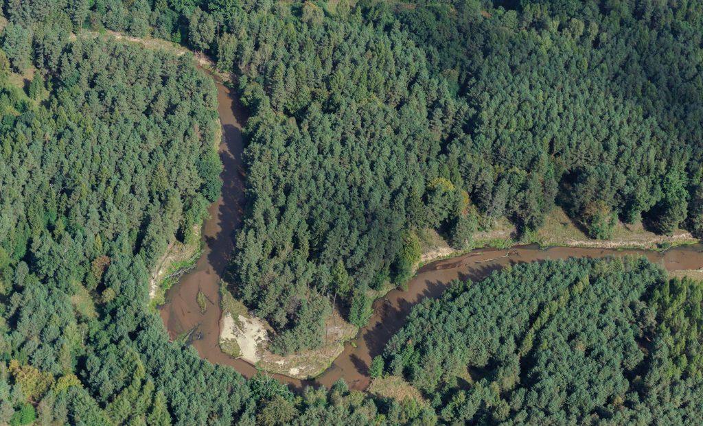 Wälder an der Malapane/Mała Panew